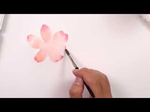 vẽ hoa bằng màu nước pentel