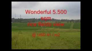 Land for sale in Bali, stunning rice fields view in TABANAN MEGATI Bali