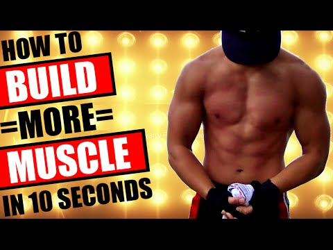 how to build more muscle