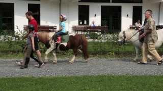 Ponyhof Meier, Eslohe