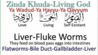 Liver Fluke Worms say Shifa
