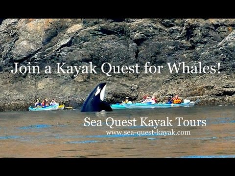 Orcas Island Sea Kayaking Tours