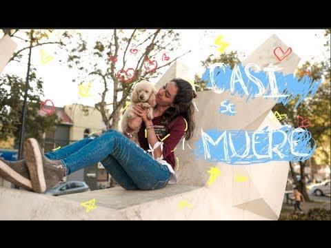 ¡EL ACCIDENTE DE CANDY!//Dany Gutiérrez♡