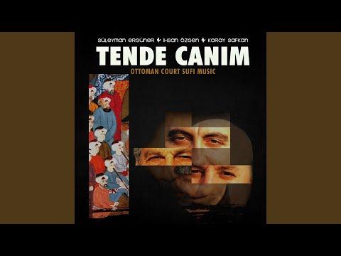 Top Tracks - Süleyman Ergüner