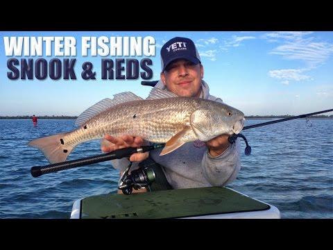 Winter Florida Redfish And Snook Fishing