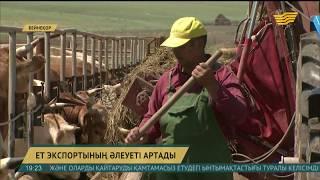 Алматы облысында ет экспортының әлеуеті артады