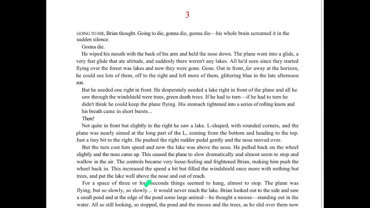 the namesake chapters 3 4 A summary of chapter 4 in jhumpa lahiri's the namesake learn exactly what  happened in this chapter, scene, or section of the namesake and what it means.
