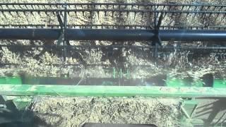 Phoenix reel cutting bean John Deere combine