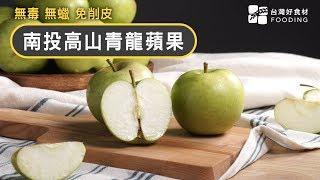 青蘋果的滋味!台灣青龍蘋果果皮不上蠟、安心無毒,清脆又香甜! | 台灣好食材 Fooding