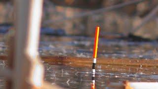Рыбалка весной  Ловля карася в марте на поплавок. My fishing