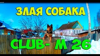 Злая собака,Клуб М26