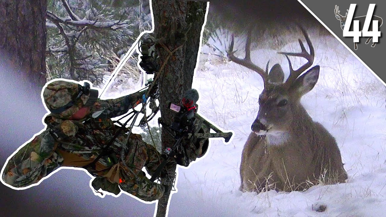 CRAZY ENCOUNTER with a BUCK! - ARROW RELEASED!    South Dakota Bowhunt