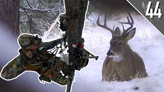 CRAZY ENCOUNTER with a BUCK! - ARROW RELEASED!  | South Dakota Bowhunt