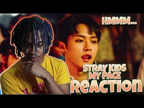 """Stray Kids """"My Pace"""" M/V - REACTION"""