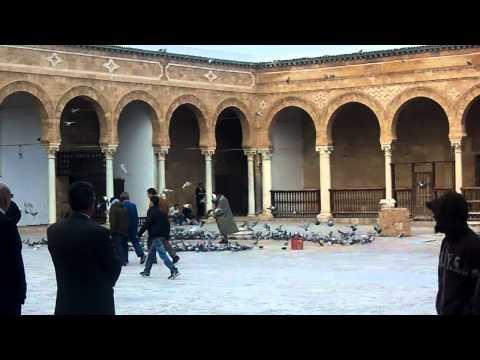 Zaytoona Mosque, Tunisia