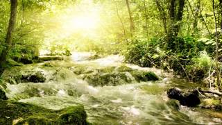 Quiet Nature - Ethereal Music