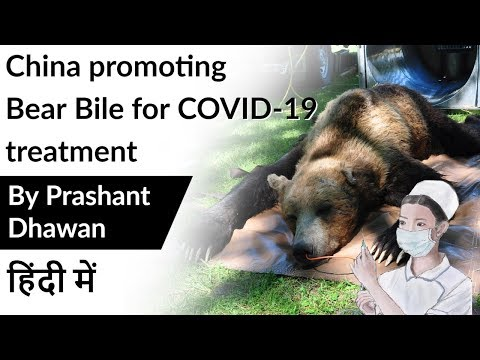 china-promoting-bear-bile-for-covid-19-treatment-current-affairs-2020