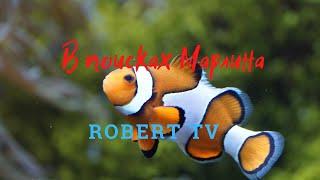 Приключения Роберта на рыбалке Морская рыбалка Охота на марлина Путешествия для детей Детский блог