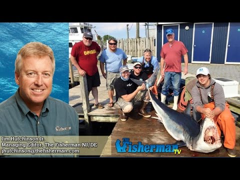 June 16 2016 new jersey delaware bay fishing report with for Barnegat bay fishing report