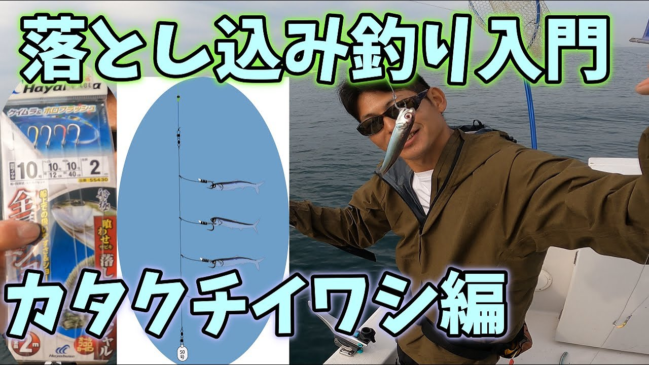 【カタクチイワシ】落とし込み入門 vol.88