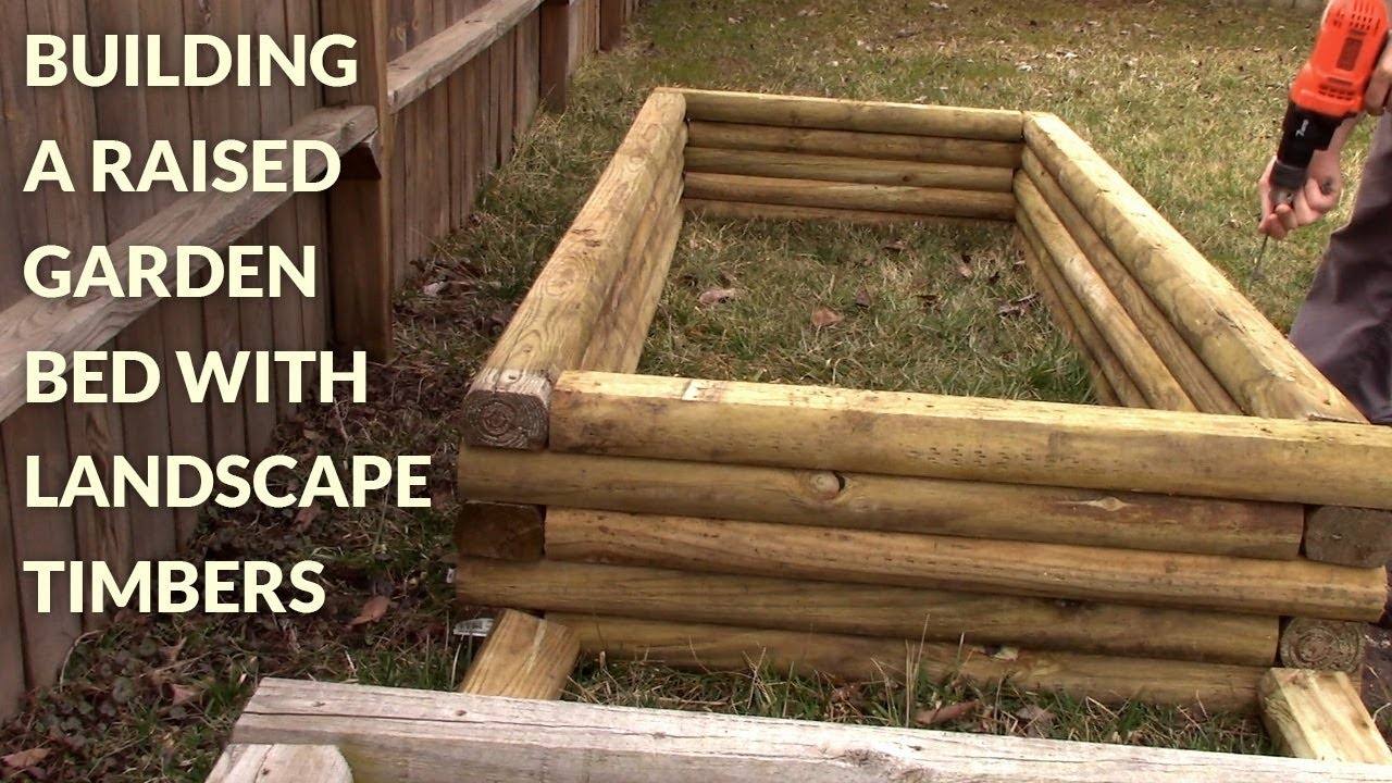 Build a Timber Raised Bed