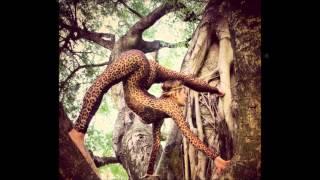 Afro, Tribal & Deep House Music Part 17 mixed by DJ Ras Sjamaan