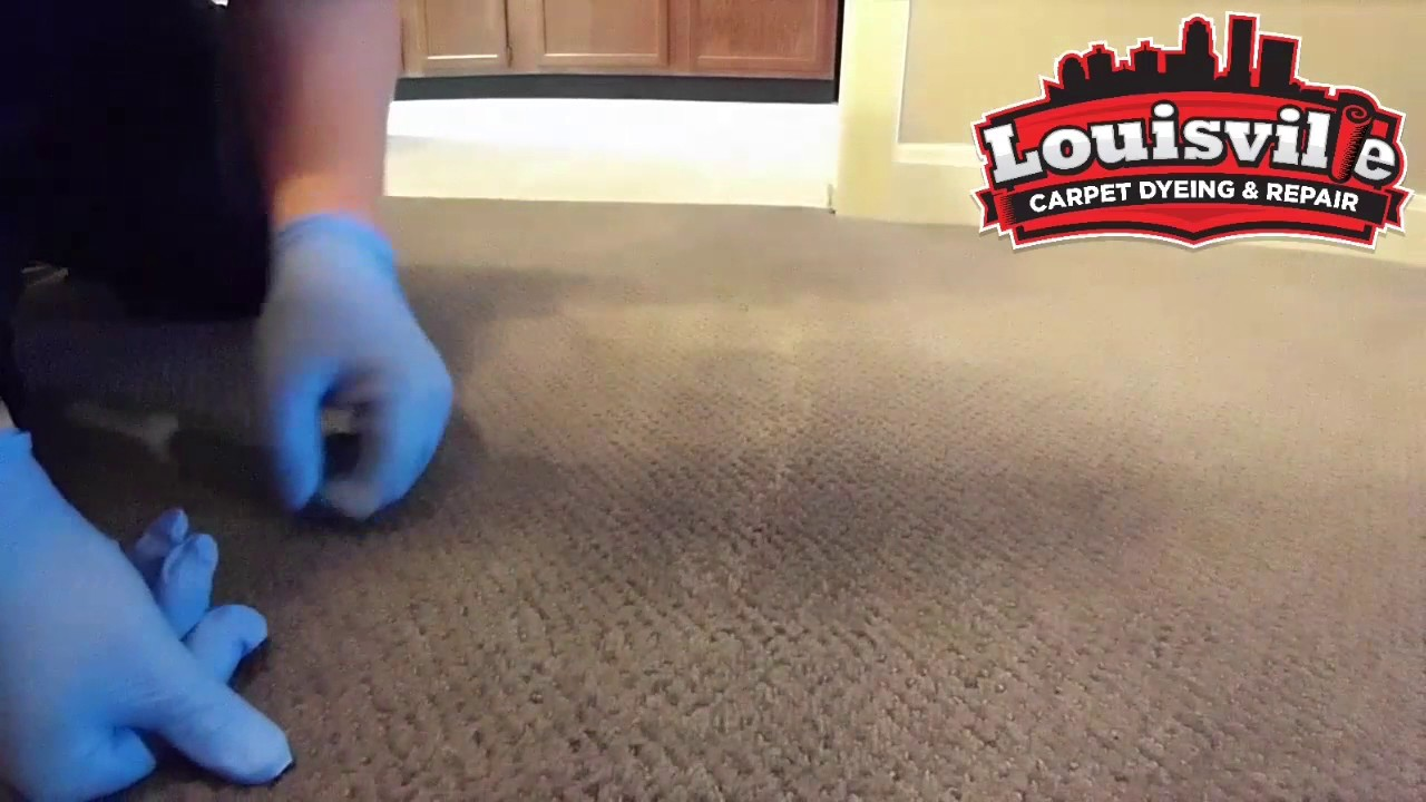 How To Fix A Bleach Spill On The Carpet