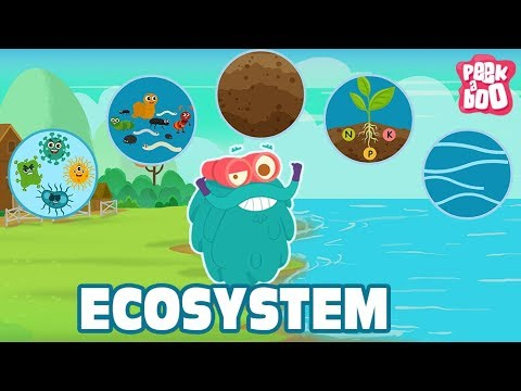 ECOSYSTEM - The Dr. Binocs Show | Best Learning Videos For K