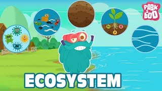 ECOSYSTEM - The Dr. Binocs Show | Best Learning Videos For Kids | Peekaboo Kidz
