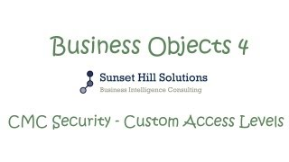 Business Objects 4x - CMC - Custom Access Levels