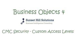 Business Objects 4x - CMC - Custom Access Levels