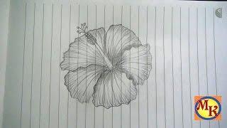 cara menggambar bunga kembang sepatu (speed drawing)