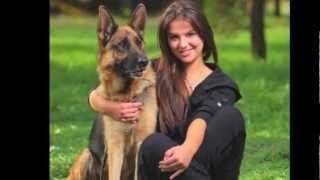 Dcs Arizona Protection Dogs