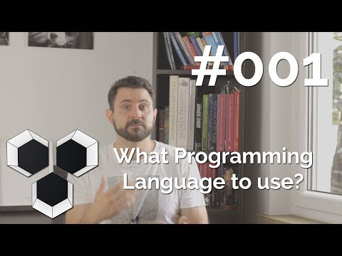 ProArchitect #001 - What Programming Language to use?
