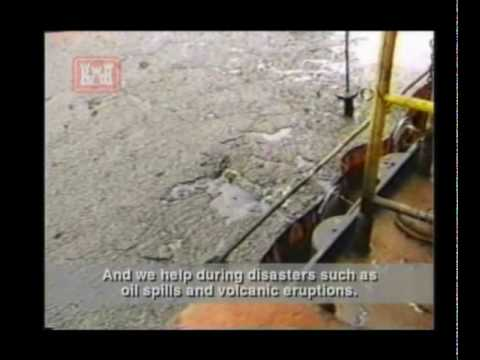 About the U.S. Army Corps of Engineers.wmv