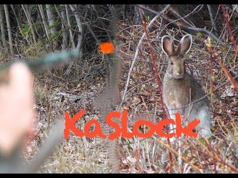 Blowgunning Rabbits With Lots Of Kill Shots