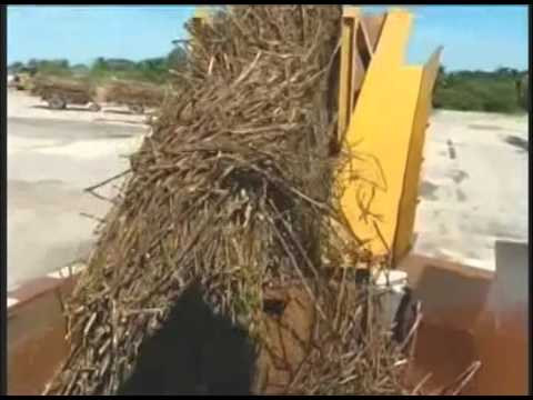 Government officials and sugar cane farmers meet