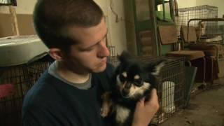 Mississippi Puppy Mill Raid