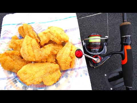CATCH and COOK Fishing Challenge!!!