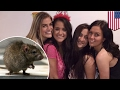 Rat in the house: College girls hailed for kicking rodent out with ingen...