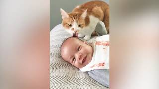 Baby and Cat Fun and Fails ||  Funny Baby Video