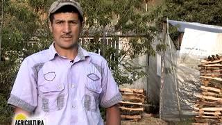 Formalización de tierras en Ramiriquí, Boyacá - Agricultura al día, 14 de febrero de 2014