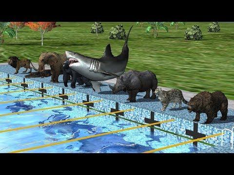 Wild Animals Swimming Race