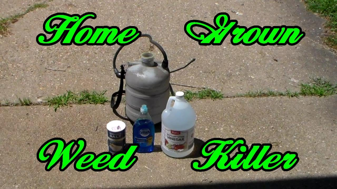 how to make weed killer at home