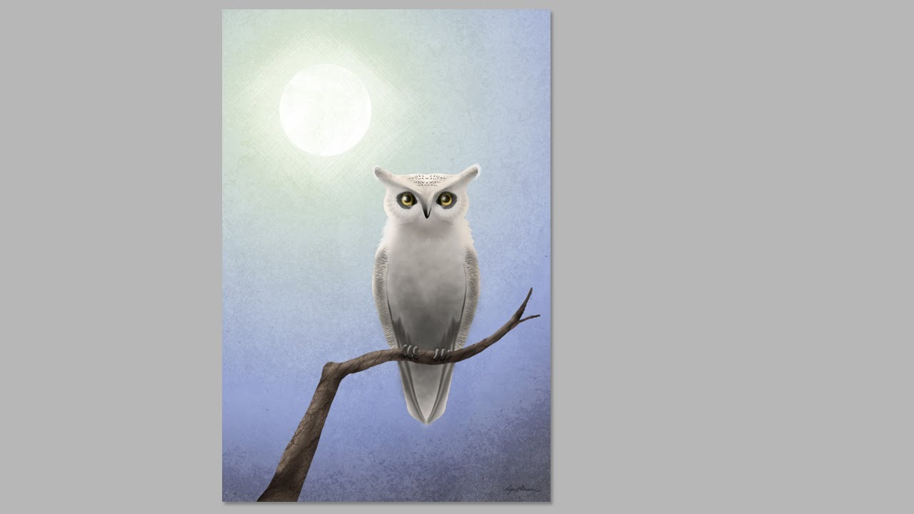 White Owl Digital Speed Painting HD YouTube