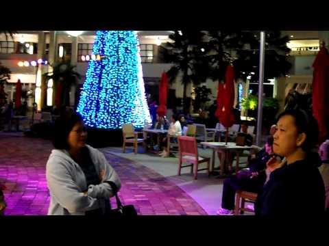 christmas 2009 Palm beach garden special lights show