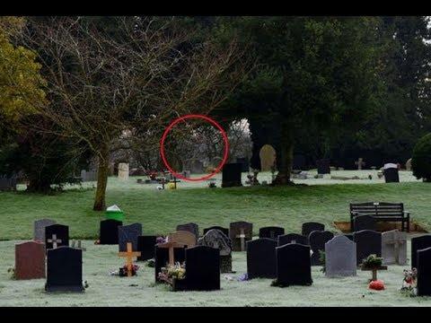 Strange Creature Filmed In A Cemetery in Akron, Ohio