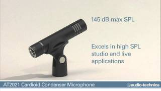 AT2021 Cardioid Condenser Stick Mic