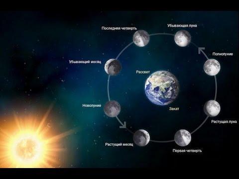 Фазы Луны в 2016 году. NASA.  Moon Phases 2016, Southern Hemisphere
