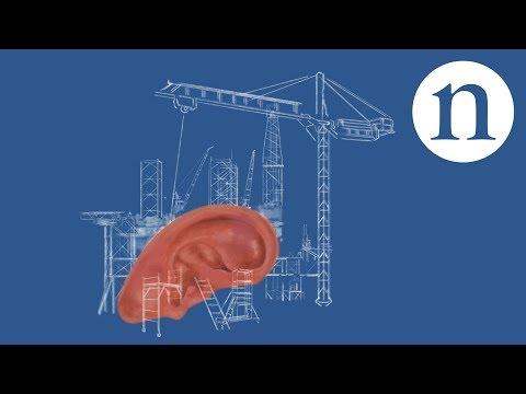 Repairing the eardrum: The sound of self-healing